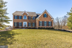 Photo of 9805 Ritchie COURT, Ijamsville, MD 21754 (MLS # 1000216114)