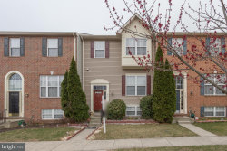 Photo of 421 Sparkleberry TERRACE NE, Leesburg, VA 20176 (MLS # 1000292394)