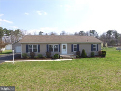 Photo of 23054 Deep Creek DRIVE, Lincoln, DE 19960 (MLS # 1001576806)