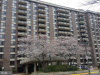 Photo of 1808 Old Meadow ROAD, Unit 1214, Mclean, VA 22102 (MLS # 1004438071)