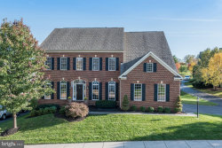Photo of 43459 Squirrel Ridge PLACE, Leesburg, VA 20176 (MLS # 1005466943)