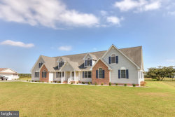 Photo of 22703 Hurdle Ditch ROAD, Harbeson, DE 19951 (MLS # 1008261950)
