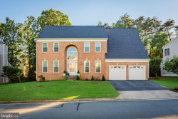 Photo of 46913 Antler COURT, Sterling, VA 20164 (MLS # 1009926652)