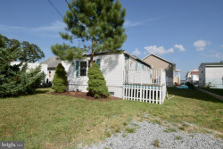 Photo of 28287 Russell STREET, Millsboro, DE 19966 (MLS # DESU144334)