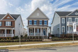 Photo of 133 Limpkin AVENUE, Clarksburg, MD 20871 (MLS # MDMC389074)