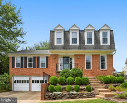 Photo of 205 Winter Frost COURT, Sterling, VA 20165 (MLS # VALO391928)