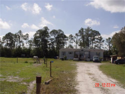 Photo of 4200 South RD, NORTH FORT MYERS, FL 33917 (MLS # 217069494)