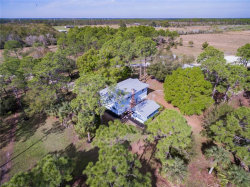 Photo of 38090 Cook Brown RD, PUNTA GORDA, FL 33982 (MLS # 219004271)