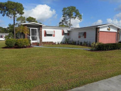 Photo of 10062 Pine Lakes BLVD, NORTH FORT MYERS, FL 33903 (MLS # 219028196)