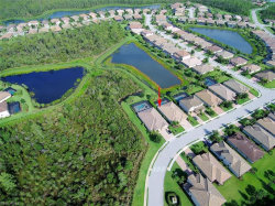Photo of 20284 Cypress Shadows BLVD, ESTERO, FL 33928 (MLS # 219047236)