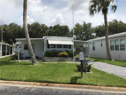 Photo of 117 Lakeview Drive, PALMETTO, FL 34221 (MLS # A4189258)