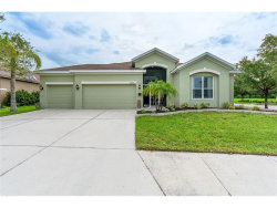 Photo of 4302 Douglas Hill Place, PARRISH, FL 34219 (MLS # A4189863)