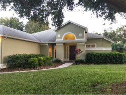 Photo of 134 Madrona Drive, EUSTIS, FL 32726 (MLS # A4199107)