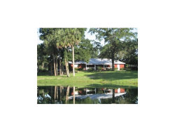 Photo of 691 Shell Harbor Road, PIERSON, FL 32180 (MLS # A4199943)