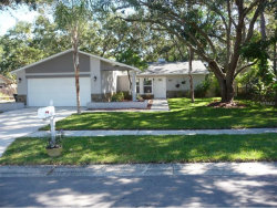 Photo of 222 Lotus Drive, SAFETY HARBOR, FL 34695 (MLS # A4203453)