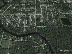 Photo of 4120 S Kings Avenue, BRANDON, FL 33511 (MLS # A4207187)