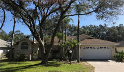 Photo of 2742 Man Of War Circle, SARASOTA, FL 34240 (MLS # A4209246)