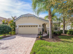 Photo of 12145 Thornhill Court, LAKEWOOD RANCH, FL 34202 (MLS # A4210617)