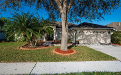 Photo of 7108 Switchgrass Trail, LAKEWOOD RANCH, FL 34202 (MLS # A4210664)