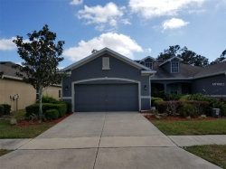 Photo of 2228 Barracuda Court, HOLIDAY, FL 34691 (MLS # A4213203)
