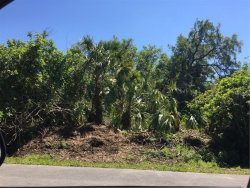 Photo of Gowanda Road, NORTH PORT, FL 34287 (MLS # C7250544)