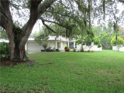 Photo of 2207 Pineland Drive, ENGLEWOOD, FL 34223 (MLS # D5918847)