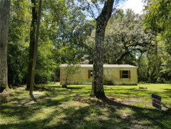 Photo of 2899 SW 116th Avenue, WEBSTER, FL 33597 (MLS # E2205053)