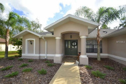 Photo of 11709 Elm Street, SAN ANTONIO, FL 33576 (MLS # E2205273)