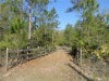 Photo of 320 Old Bubbly Road, PIERSON, FL 32180 (MLS # G4842243)