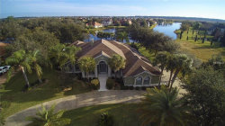 Photo of 2017 Castelli Boulevard, MOUNT DORA, FL 32757 (MLS # G4850633)