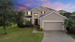 Photo of 551 Hernando Place, CLERMONT, FL 34715 (MLS # G4851616)