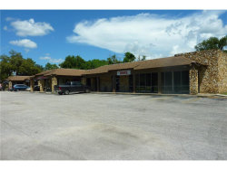 Photo of 3941 Lake Padgett Drive, LAND O LAKES, FL 34639 (MLS # H2203944)