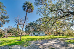 Photo of 827 Jerry Smith Road, DOVER, FL 33527 (MLS # L4725037)