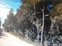 Photo of Nine Mile Point Road S, PIERSON, FL 32180 (MLS # O5490759)