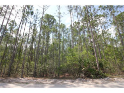 Photo of 917 Ashby Way, OSTEEN, FL 32764 (MLS # O5507444)