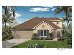 Photo of 1839 Plumas Way, ORLANDO, FL 32824 (MLS # O5548841)