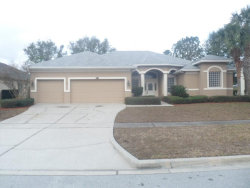 Photo of 4312 Fawn Meadows Circle, CLERMONT, FL 34711 (MLS # O5556512)