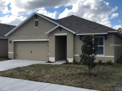 Photo of 195 Lazy Willow Drive, DAVENPORT, FL 33837 (MLS # O5557647)