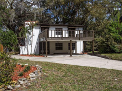 Photo of 1017 Delaney Park Drive, ORLANDO, FL 32806 (MLS # O5564087)