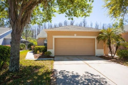 Photo of 7235 Cleopatra Drive, LAND O LAKES, FL 34637 (MLS # O5569224)