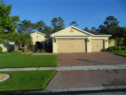Photo of 3820 Gulf Shore Circle, KISSIMMEE, FL 34746 (MLS # S4850631)