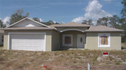 Photo of 196 Willow Drive, POINCIANA, FL 34759 (MLS # S4853689)