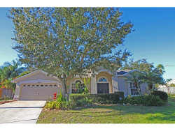 Photo of 18002 Palm Breeze Drive, TAMPA, FL 33647 (MLS # T2859990)