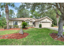 Photo of 10204 Collar Drive, SAN ANTONIO, FL 33576 (MLS # T2884208)