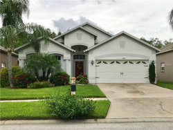 Photo of 4438 Havelocke Drive, LAND O LAKES, FL 34638 (MLS # T2889001)