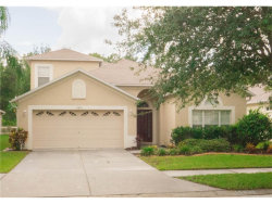 Photo of 15830 Leatherleaf Lane, LAND O LAKES, FL 34638 (MLS # T2889007)