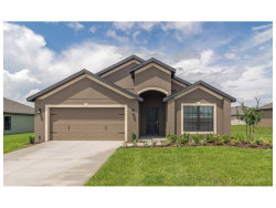 Photo of 11808 Thicket Wood Drive, RIVERVIEW, FL 33579 (MLS # T2889449)