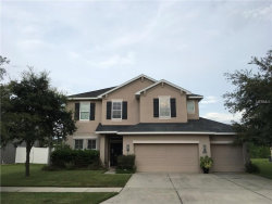 Photo of 2622 Red Fern Drive, DOVER, FL 33527 (MLS # T2894803)