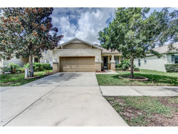 Photo of 11119 Running Pine Drive, RIVERVIEW, FL 33569 (MLS # T2899387)