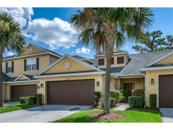 Photo of 20125 Indian Rosewood Drive, TAMPA, FL 33647 (MLS # T2899848)